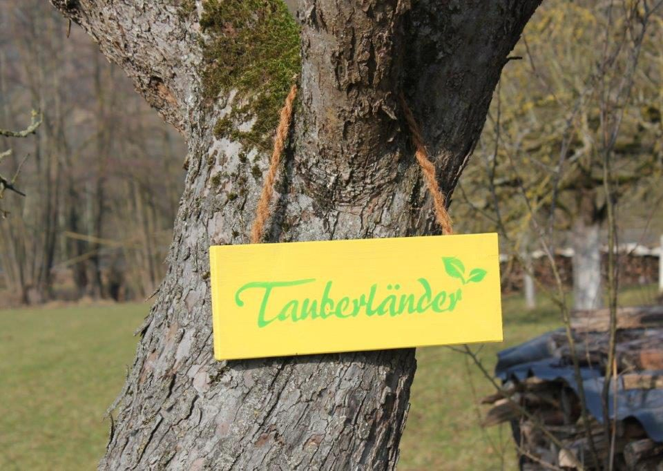 Tauberländer Schild an Baum